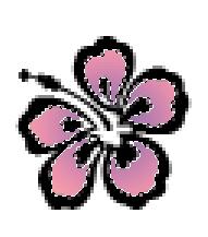 Petals Selection